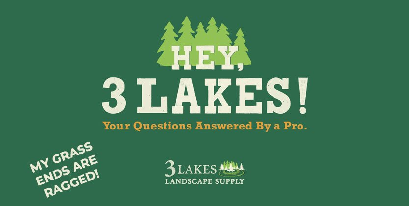 Hey, 3 Lakes! I checked my grass cuttings like you suggested and they are ragged. Guess it's time to replace the lawn mower blades. What else do I need to think about?